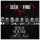 The Seek and Find Project (Facebook)