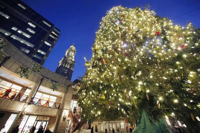christmas-tree_ap-images